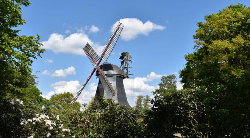 Blick vom Garten auf die Mühle